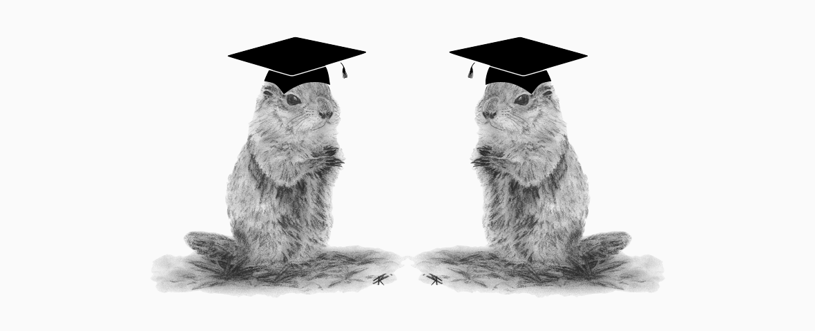 Featured Image for Groundhog Day In Higher Education